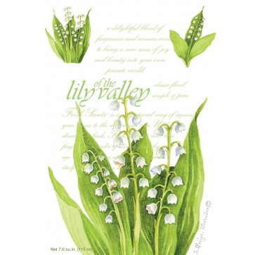 Fresh Scents Sachet Αρωματικό Φακελάκι Lily Of The Valley 115 Ml