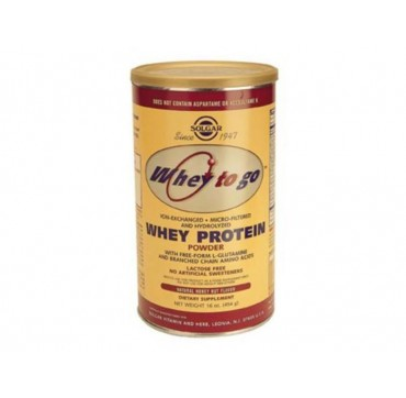 Solgar Whey To Go Protein Vanilla 340g