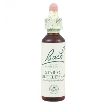 POWER HEALTH BACH STAR OF BETHLEHEM 20ML