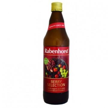 Rabenhorst Berry Selection Βίο 750ml