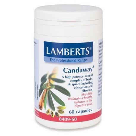 LAMBERTS CANDAWAY 60babs