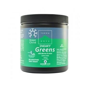 TERRANOVA GREEN CHILD SNEAKY GREENS SHAKE 180gr