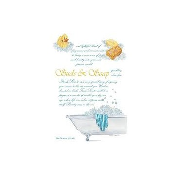 GREENLEAF Αρωματικό Φακελάκι Suds & Soap 115ml