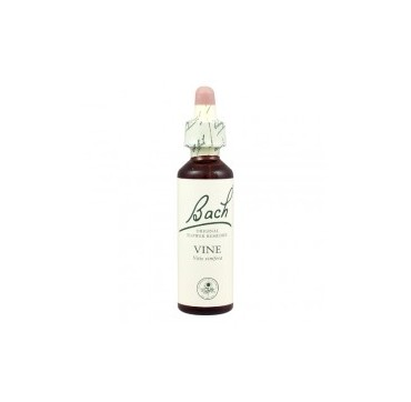 POWER HEALTH BACH VINE 20ML