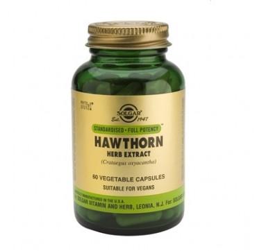 Solgar Sfp Hawthorn Herb Extract 60veg.caps