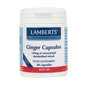 LAMBERTS GINGER 120MG 60caps