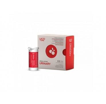 INNOVIS HEALTH LACTOTUNE URINARY 12 CAPS